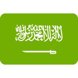 التشاور مع الموقع باللغة العربية